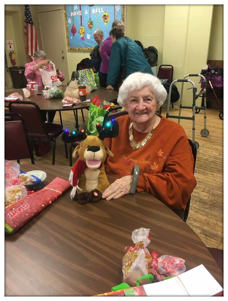 District 133 Brought The Holiday Spirit To Seniors